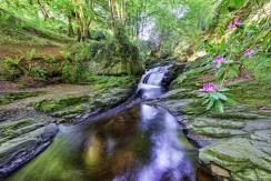 "The ""Devil's Coffin"" Burn & Waterfall Milltown, Strabane, Co Tyrone"