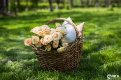 55880746 - spring picnic in a park, wicker basket with flowers and pillows on the fresh green grass, relaxing on vacation